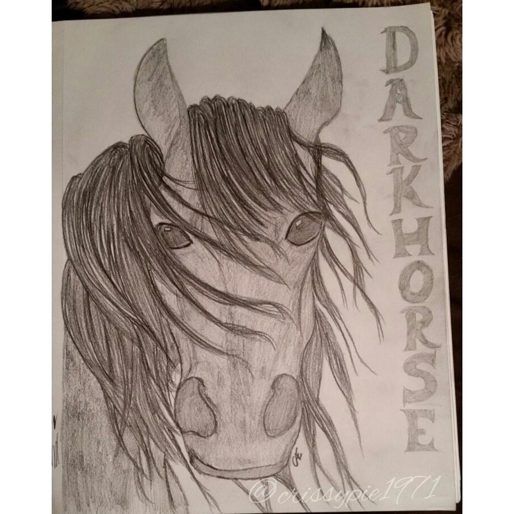 Darkhorse Drawing by Christine A Ellis/CreativelyMusical.com
